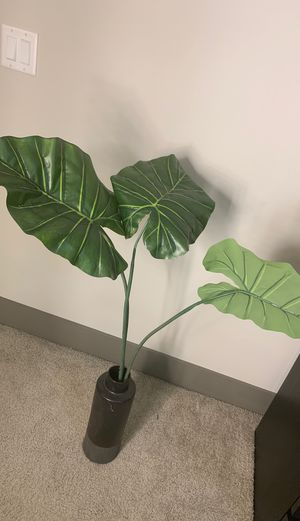 Fake plant for Sale in Miami, FL