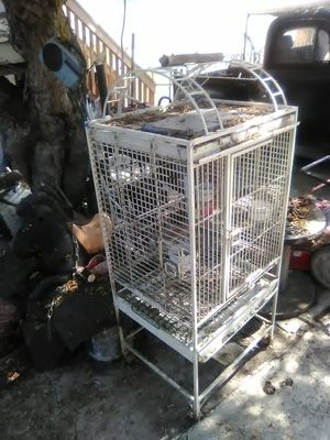 Large bird cage for Sale in San Diego, CA