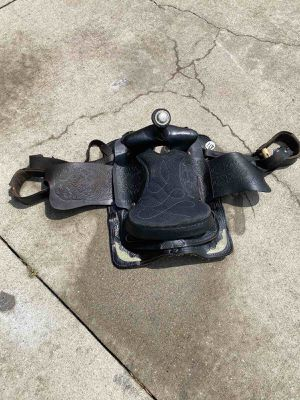 Horse saddle for Sale in Nicholasville, KY