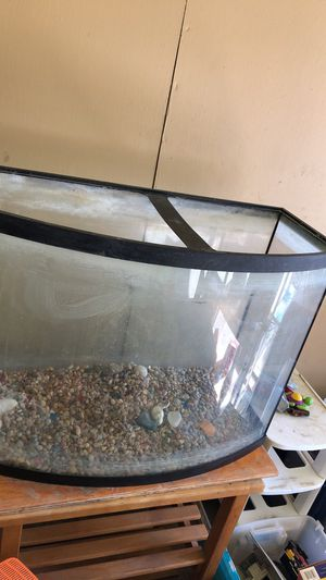 55 gallon fish tank Just the tank for Sale in Rohnert Park, CA