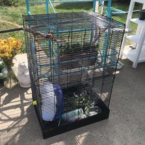 Flying Squirrel, Ferret/Critter Cage, complete setup for Sale in Golden, CO