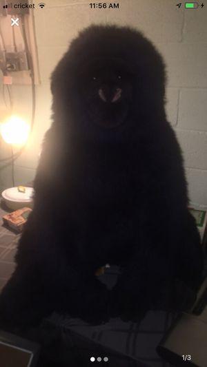 TY JUMBO GEORGE BEANIE BABY 1989 Black Gorilla Ape VERY RARE! Stuffed animal for Sale in Clinton Township, MI