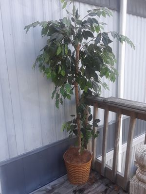 Artificial Tree with Beautiful Woven Basket!! for Sale in Portsmouth, VA