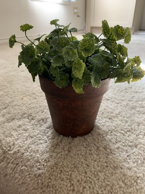Fake plant for Sale in Schaumburg, IL