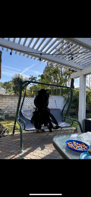 Free swing chair for Sale in La Verne, CA