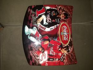 Dale Earnhardt Jr and Dale Sr replica hood for Sale in East Providence, RI