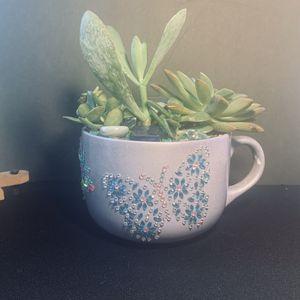 """Succulents In A Mug"" By Brenda's Unique Design for Sale in Blacklick, OH"