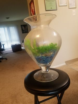 Large Glass Vase, Fish Tank for Sale in Washington, DC