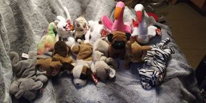 Ty Beanie Babies Lot for Sale in Menasha, WI