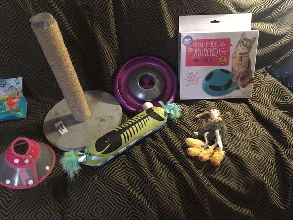 Cat Kitten Supplies Starter Pack