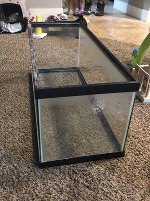 20 gallon fish tank for Sale in Saratoga Springs, UT