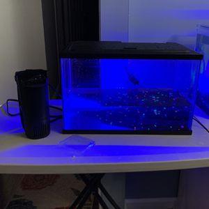 5 Gallon Fish Tank for Sale in Farmingdale, NY
