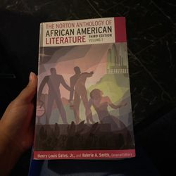The Norton Anthology Of African American Literature for Sale in Columbus,  OH