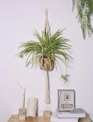 Plant Holder for Sale in Woodbridge, VA