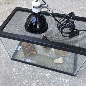 Reptile Tank (with Lamp!) for Sale in Orlando, FL