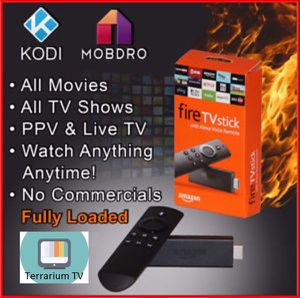 Fire tv with Alexa and working Terrarium TV for Sale in Chino Hills, CA