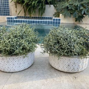 2 Fake Planters With Pots for Sale in Los Angeles, CA