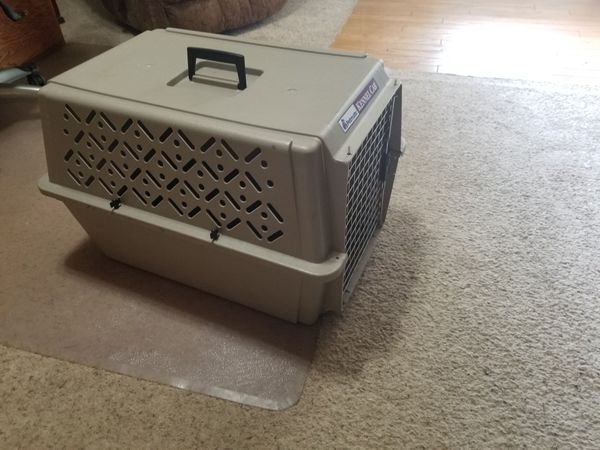 Nice but used plastic dog kennel.