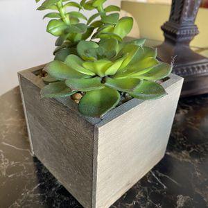 More Artificial Succulent For Indoor Or Outdoor for Sale in Glendora, CA