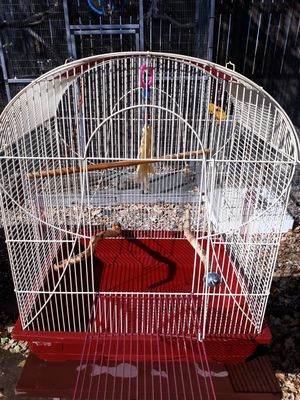 Small parolett, parakeet, lovie cage for Sale in Peyton, CO