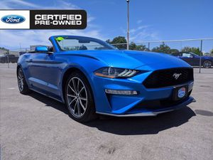 2019 Ford Mustang for Sale in Sarasota, FL