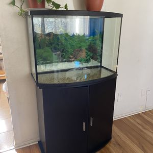 Top Fin Bowfront Aquarium & Stand Ensemble, 36 Gallon for Sale in Hawthorne, CA