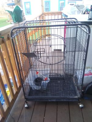 Animal cage for Sale in Depew, NY