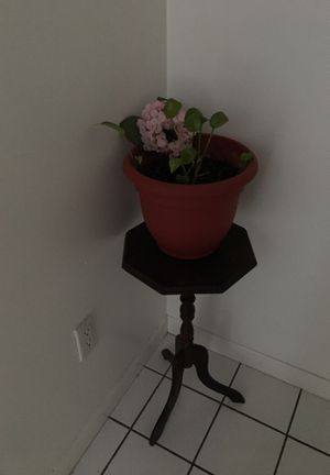 Pot plant and table for $20 for Sale in Absecon, NJ