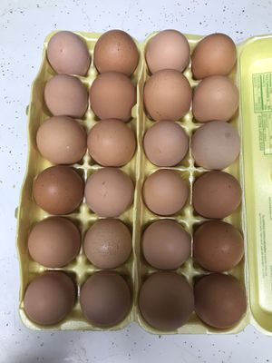 Farm fresh brown eggs 3.00 a dozen. for Sale in Seaford, DE