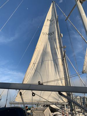 Mainsail for ~45ft boat - FLASH SALE for Sale in Santa Monica, CA