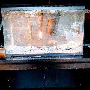 Ten Gallon Fish Tank 💜 for Sale in Visalia, CA