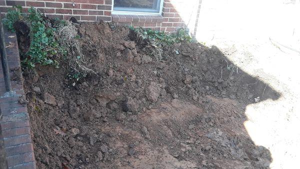Free good land for back yards flls