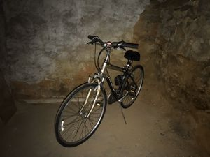 """19"""" Raleigh C40 for Sale in Ardmore, PA"""