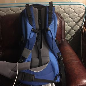 Kelty Kids Hiking Backpack Child Carrier for Sale in Puyallup, WA