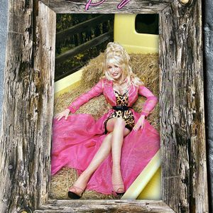 Dolly Parton Backwoods Barbie Official Tour-Book for Sale in Glen Ellyn, IL