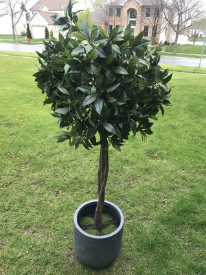 5ft tall realistic potted tree with ceramic pot. for Sale in West Dundee, IL