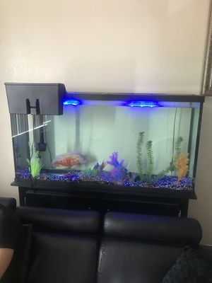 Fish tank 60 gallons with fish included and lights and everything for Sale in Las Vegas, NV