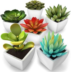 kdelicate Artificial Succulent Assorted Decorative Faux Succulent Fake Plants with White Ceramic Pots -Pack of 6 for Sale in Houston, TX