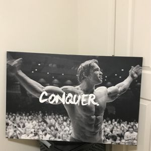 Arnold Schwarzenegger Conquer Canvas Picture Print for Sale in Portland, OR