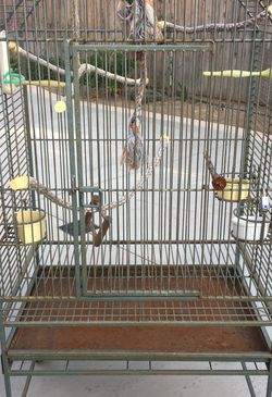 Iron Bird Cage for Sale in Sylmar,  CA