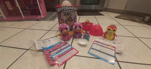 Hatchimals for Sale in Dover, FL