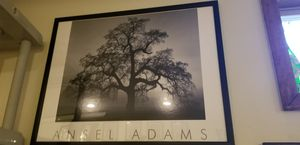 Ansel Adam's framed photography for Sale in Rhinebeck, NY