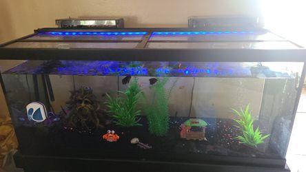 75 gallon fish tank for Sale in Village,  OK