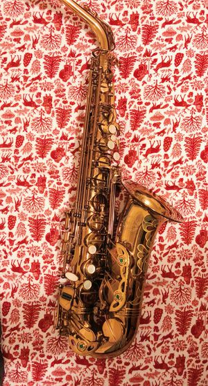 Chateau Alto Saxophone for Sale in Portland, OR