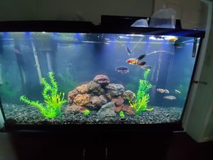 Fish tank 60gallons for Sale in Riverside, CA