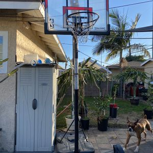 Portable Basketball Court for Sale in Long Beach, CA