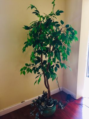 Artificial silk plant for Sale in Clearwater, FL