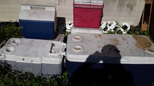 5 coolers for Sale in Ruskin, FL