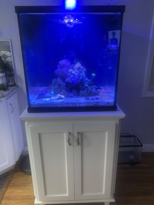 Reef fish tank aquarium for Sale in Lakewood, CA