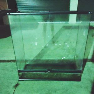 Reptile Glass Terriaum for Sale in Tomball, TX